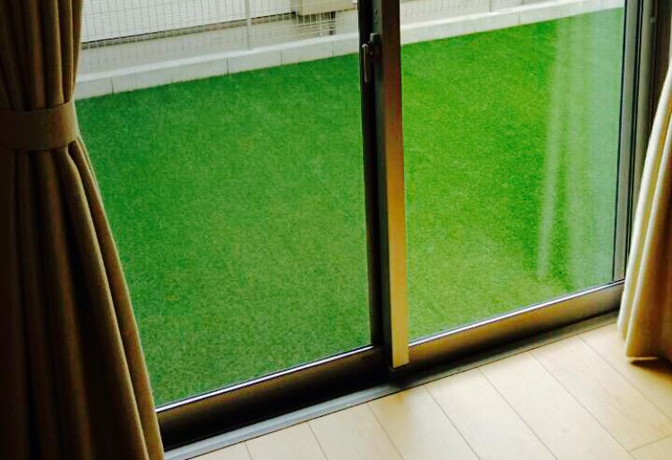人工芝の使用を室内から見た写真