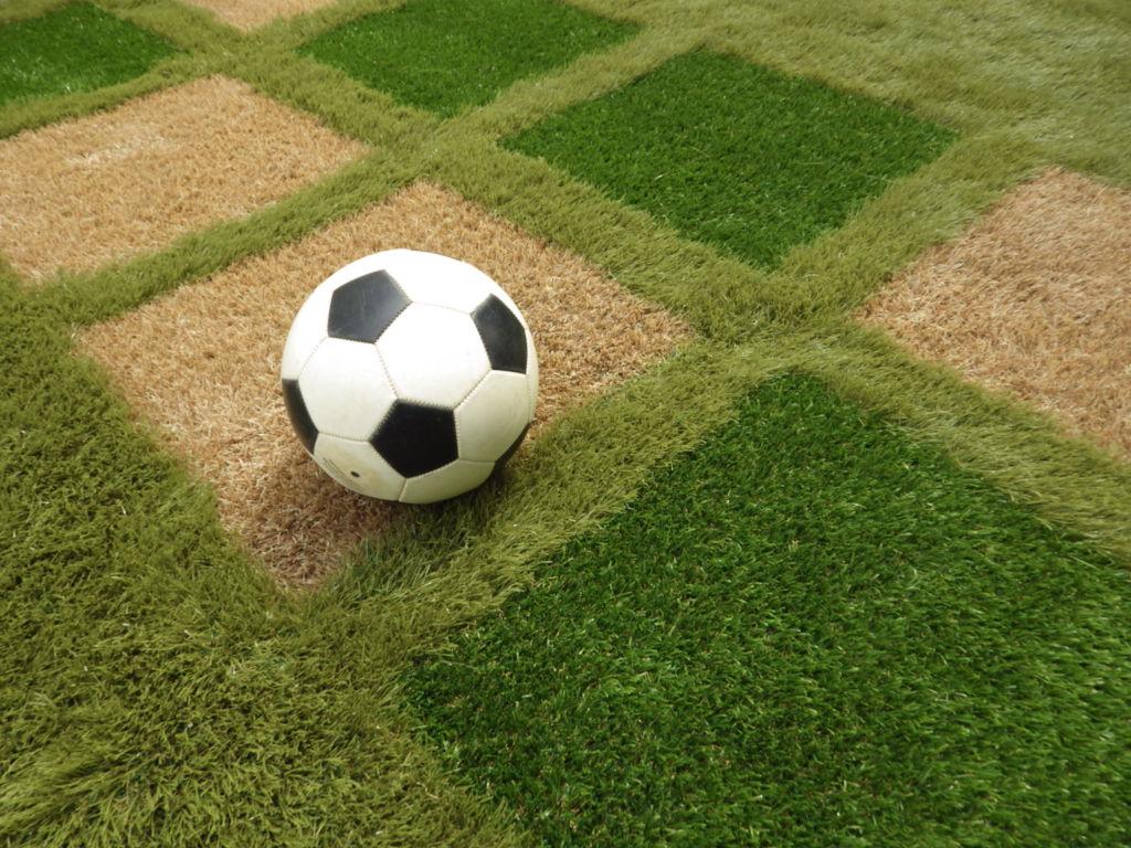 カラーの人工芝を活用した庭にサッカーボールが転がっている写真